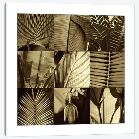 Tropical Leaves I Canvas Print #KEL48} by Caroline Kelly Canvas Artwork