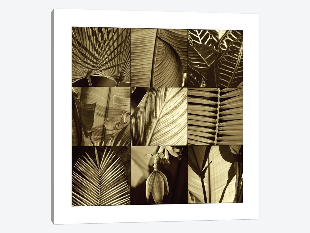 Tropical Leaves I by Caroline Kelly 1-piece Canvas Wall Art