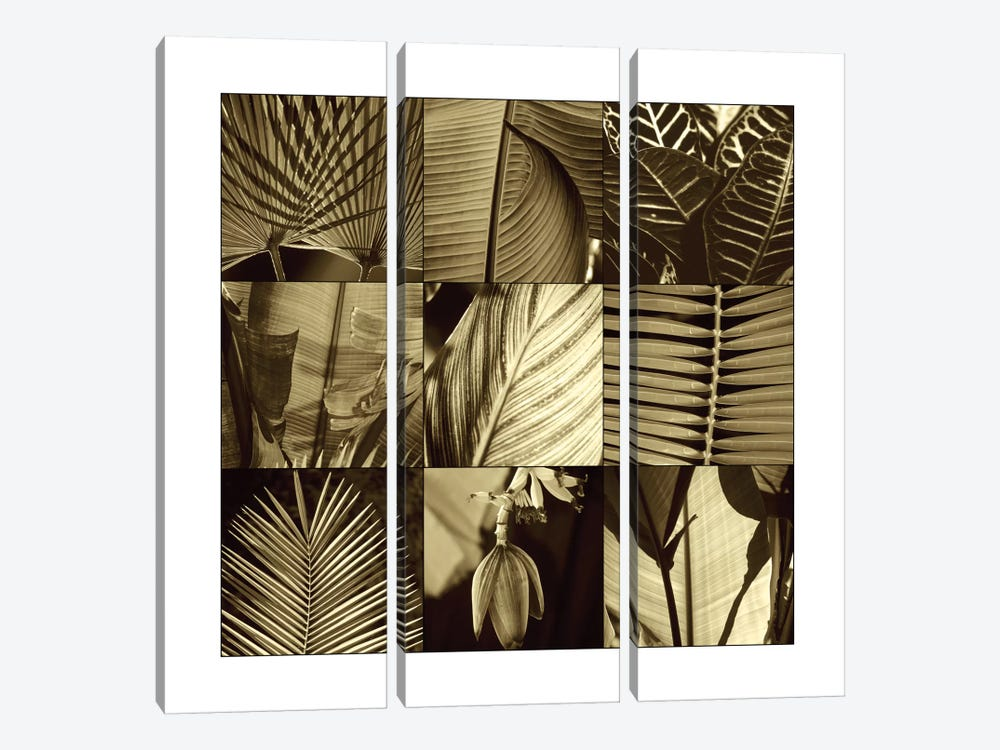 Tropical Leaves I by Caroline Kelly 3-piece Canvas Wall Art