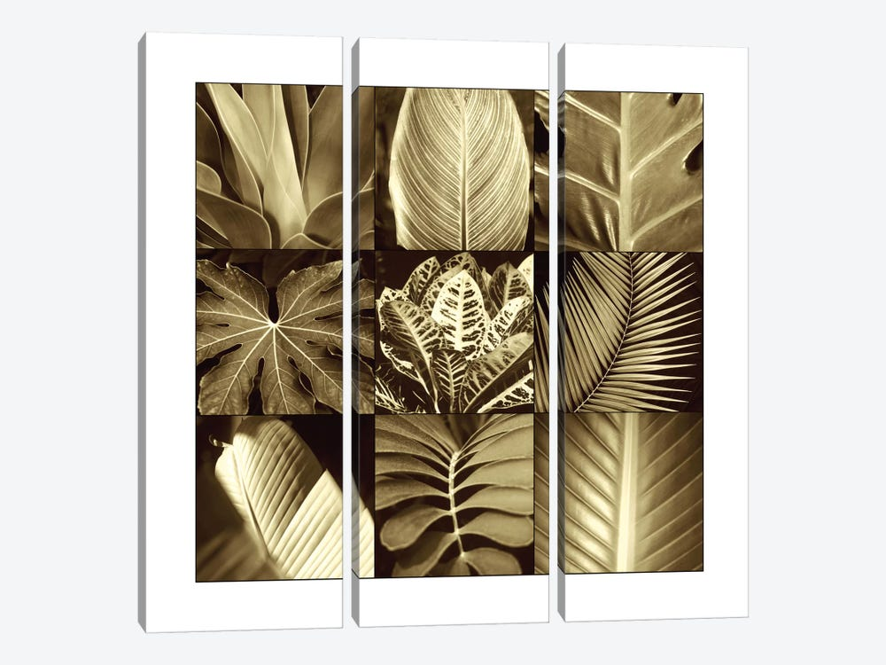 Tropical Leaves II by Caroline Kelly 3-piece Art Print