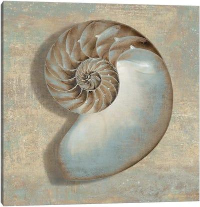 Aqua Nautilus Canvas Print #KEL4
