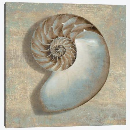 Aqua Nautilus Canvas Print #KEL4} by Caroline Kelly Canvas Artwork