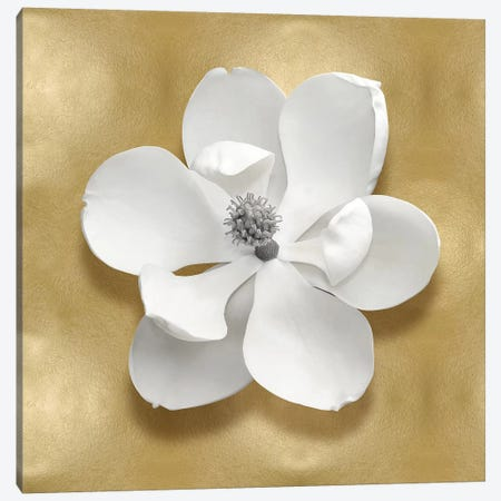 Flower On Gold I Canvas Print #KEL54} by Caroline Kelly Canvas Wall Art