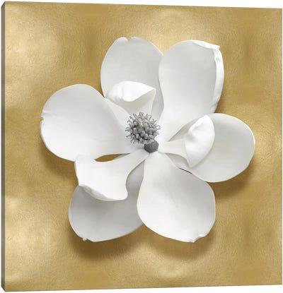 Flower On Gold I Canvas Art Print