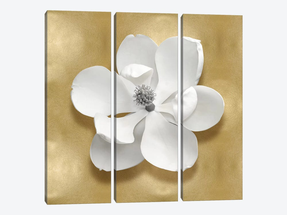 Flower On Gold I 3-piece Canvas Print