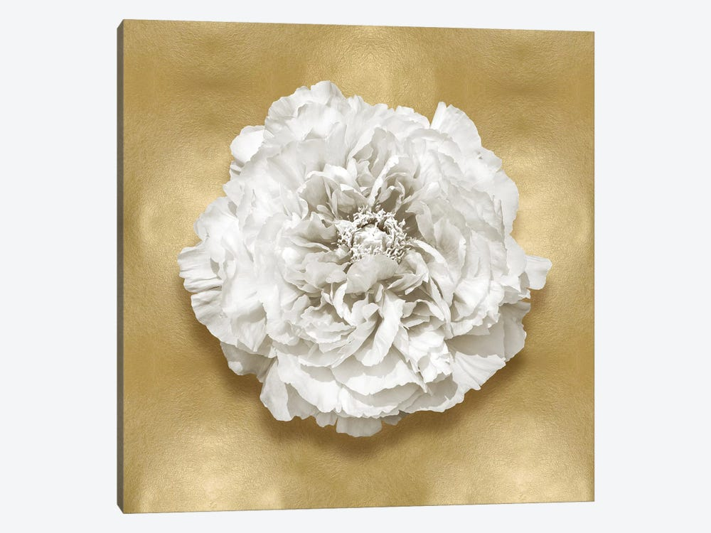Flower On Gold II by Caroline Kelly 1-piece Canvas Art