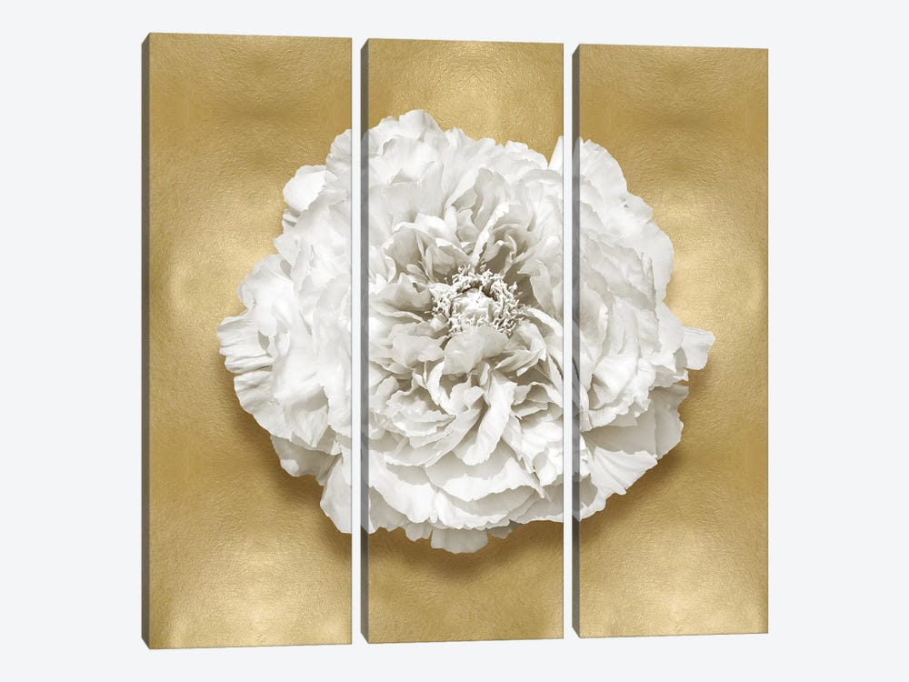 Flower On Gold II by Caroline Kelly 3-piece Canvas Artwork