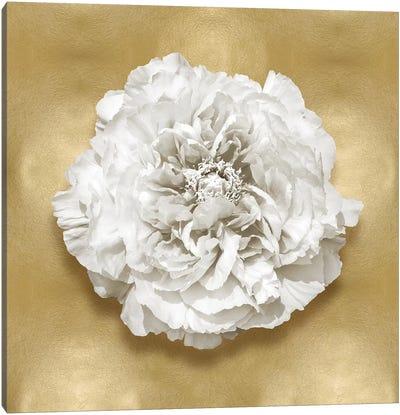 Flower On Gold II Canvas Art Print