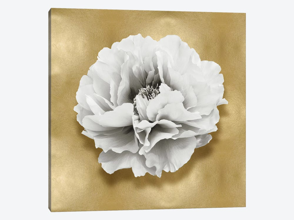 Flower On Gold III by Caroline Kelly 1-piece Canvas Print