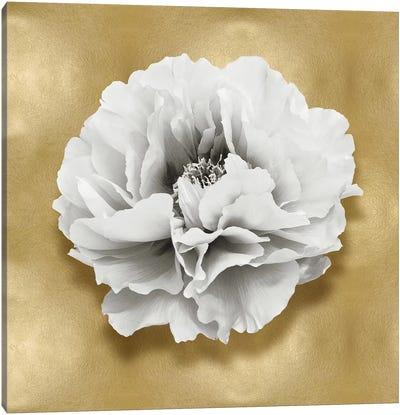Flower On Gold III Canvas Art Print
