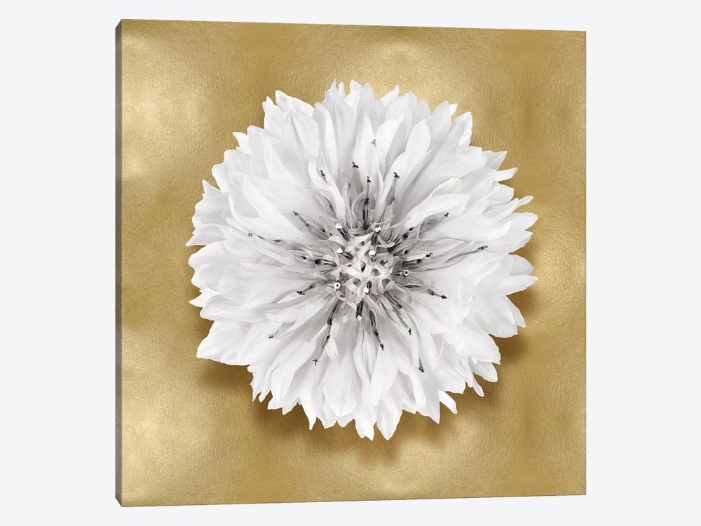 Flower On Gold IV by Caroline Kelly 1-piece Canvas Artwork