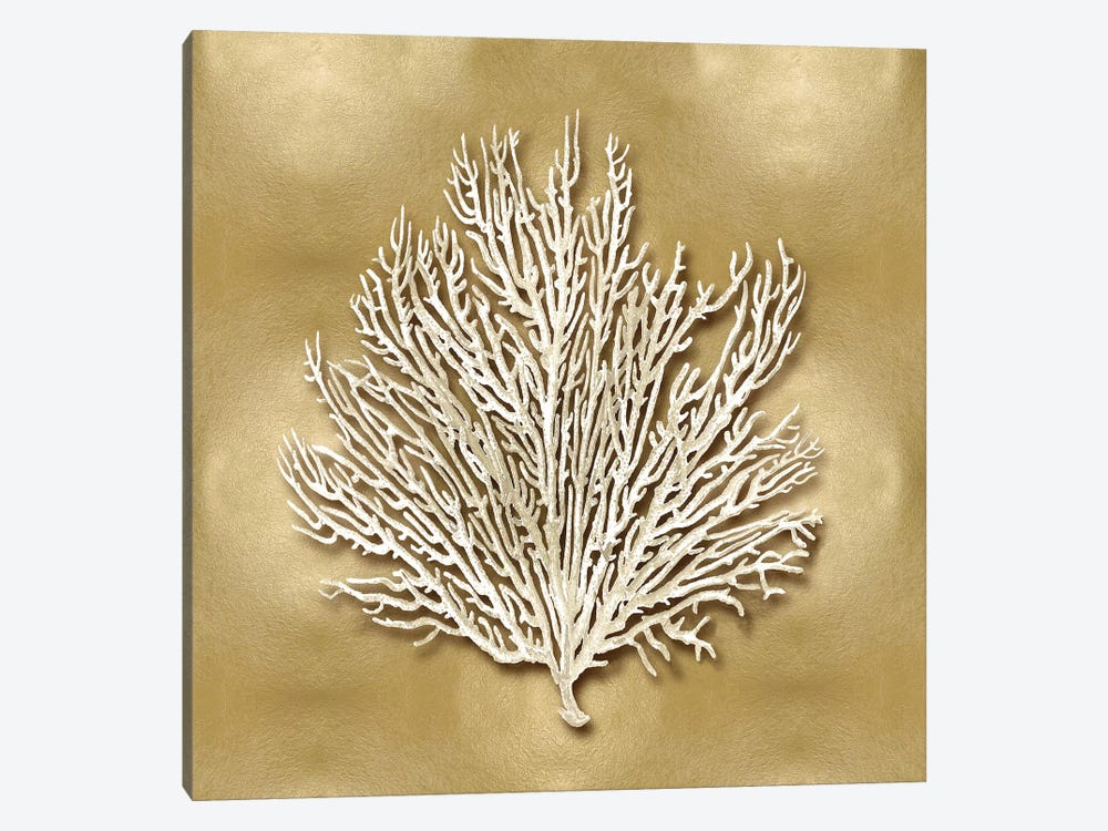 Sea Fan On Gold I by Caroline Kelly 1-piece Canvas Print