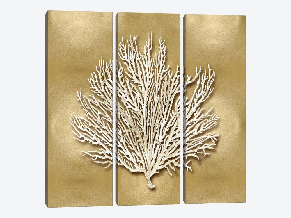 Sea Fan On Gold I by Caroline Kelly 3-piece Art Print