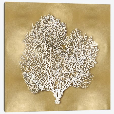 Sea Fan On Gold II Canvas Print #KEL59} by Caroline Kelly Canvas Print
