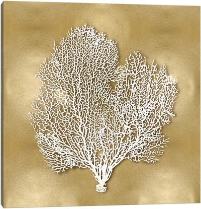 Sea Fan On Gold II Canvas Art Print