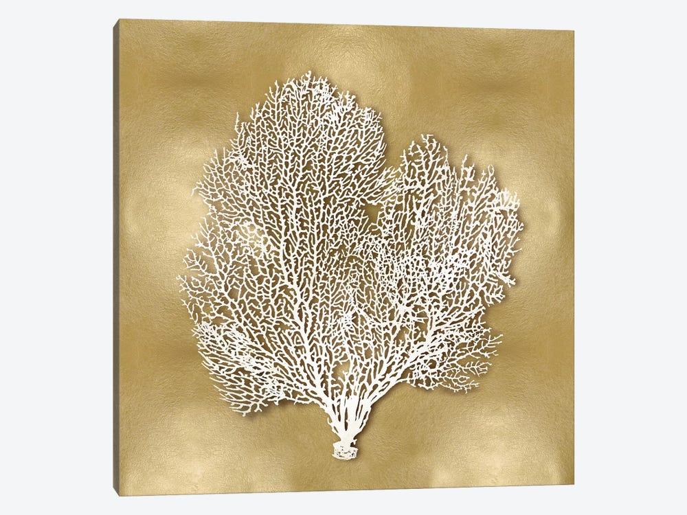 Sea Fan On Gold II by Caroline Kelly 1-piece Canvas Wall Art