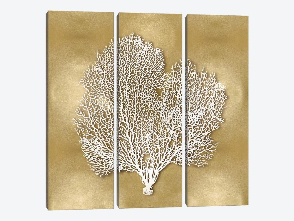 Sea Fan On Gold II by Caroline Kelly 3-piece Canvas Art