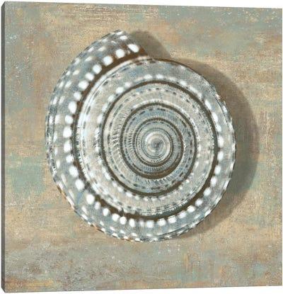 Aqua Seashell Canvas Art Print