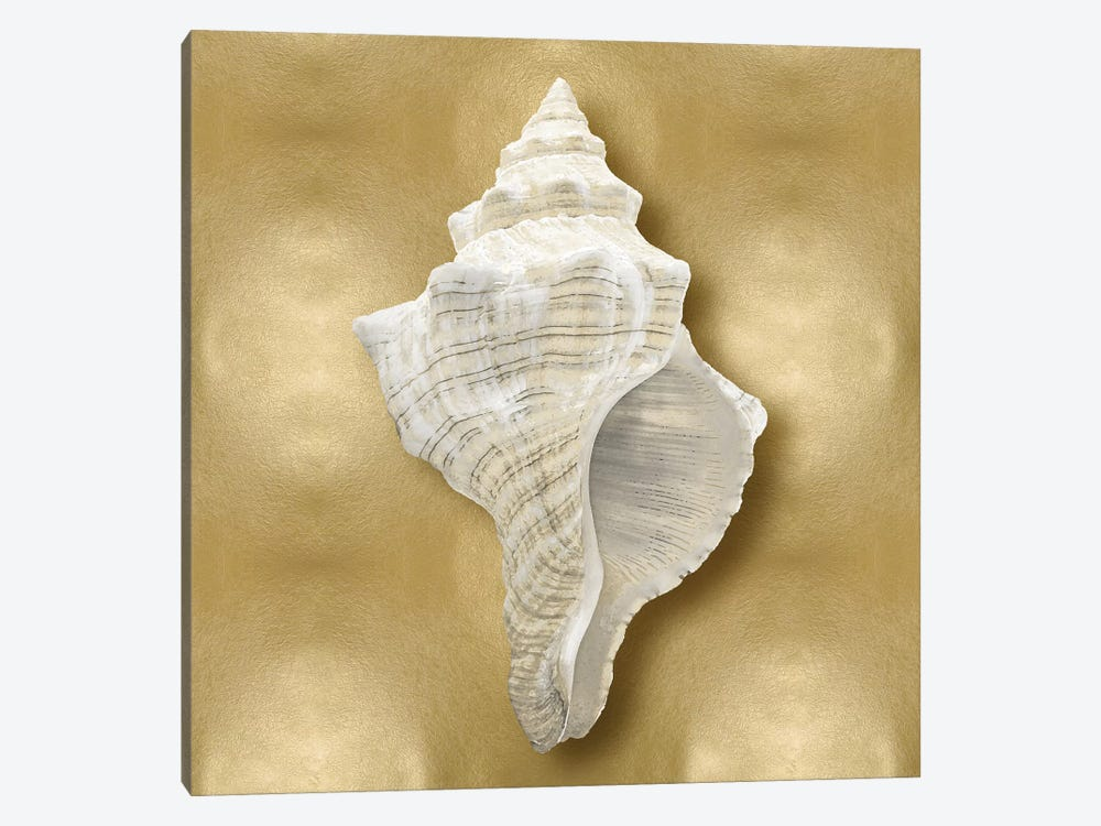 Shell On Gold I by Caroline Kelly 1-piece Canvas Wall Art