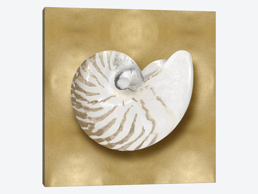 Shell On Gold III by Caroline Kelly 1-piece Canvas Wall Art