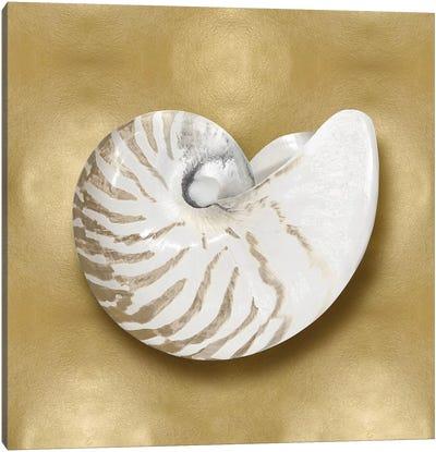 Shell On Gold III Canvas Art Print