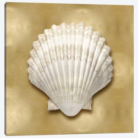 Shell On Gold IV Canvas Print #KEL63} by Caroline Kelly Canvas Art