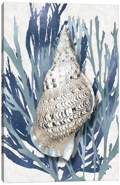 Shell Coral Aqua Blue I Canvas Art Print