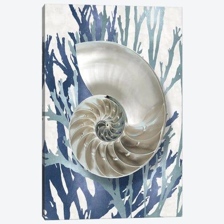 Shell Coral Aqua Blue II Canvas Print #KEL67} by Caroline Kelly Canvas Print