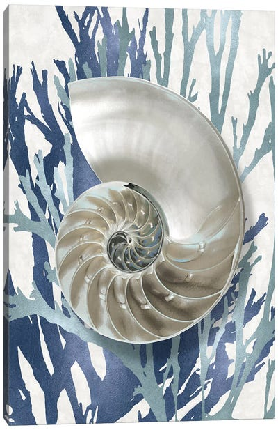Shell Coral Aqua Blue II Canvas Art Print