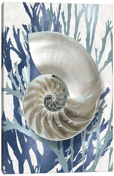Shell Coral Aqua Blue II Canvas Art Print