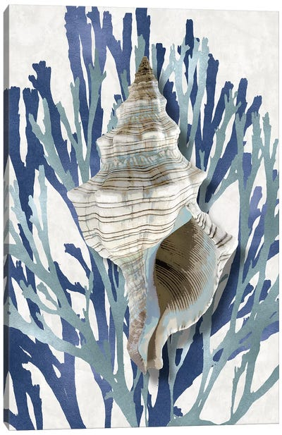 Shell Coral Aqua Blue III Canvas Art Print