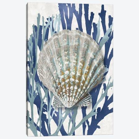 Shell Coral Aqua Blue IV Canvas Print #KEL69} by Caroline Kelly Canvas Art