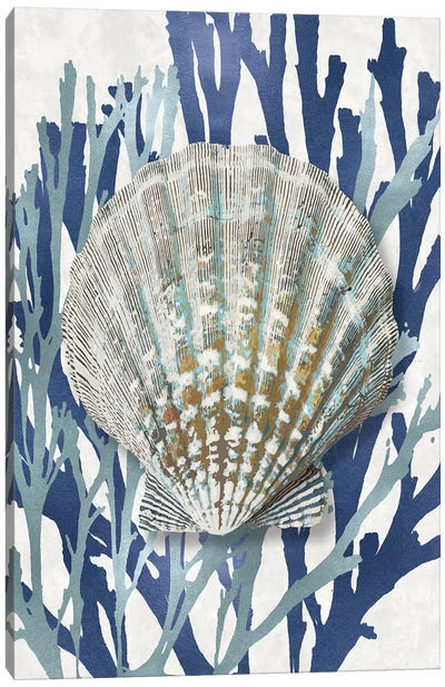 Shell Coral Aqua Blue IV Canvas Art Print