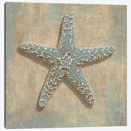 Aqua Starfish Canvas Print #KEL6} by Caroline Kelly Canvas Wall Art
