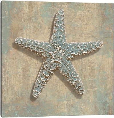 Aqua Starfish Canvas Print #KEL6