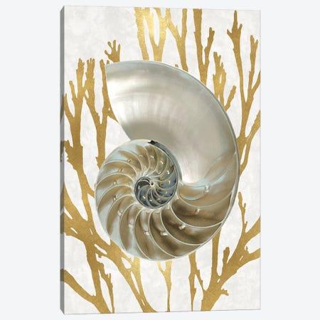 Shell Coral Gold II Canvas Print #KEL71} by Caroline Kelly Canvas Print
