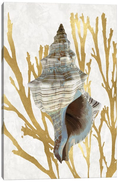Shell Coral Gold III Canvas Art Print