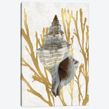 Shell Coral Gold III Canvas Print #KEL72} by Caroline Kelly Canvas Art Print
