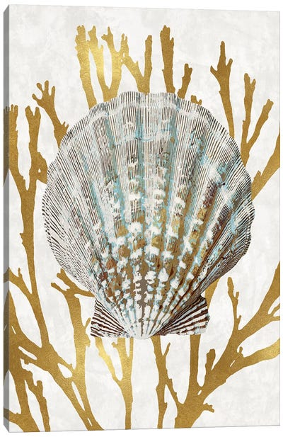 Shell Coral Gold IV Canvas Art Print