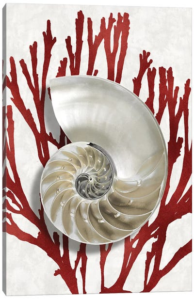 Shell Coral Red II Canvas Art Print