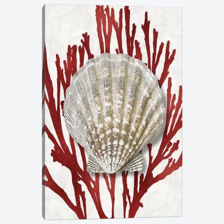Shell Coral Red IV Canvas Print #KEL77} by Caroline Kelly Canvas Art