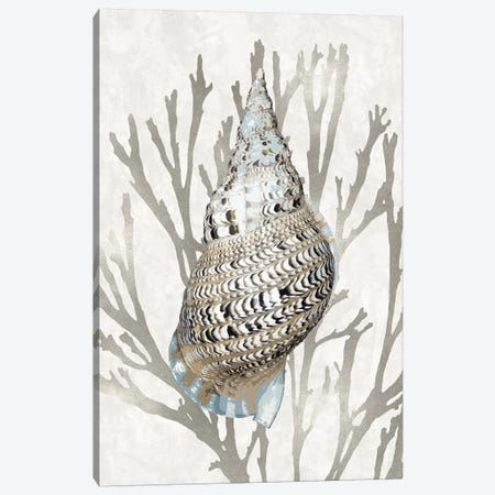 Shell Coral Silver I Canvas Print #KEL78} by Caroline Kelly Canvas Art Print