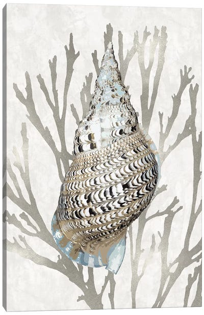 Shell Coral Silver I Canvas Art Print