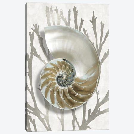 Shell Coral Silver II Canvas Print #KEL79} by Caroline Kelly Canvas Art Print