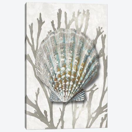 Shell Coral Silver IV Canvas Print #KEL81} by Caroline Kelly Canvas Artwork
