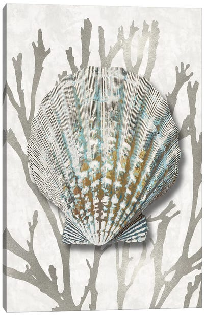 Shell Coral Silver IV Canvas Art Print