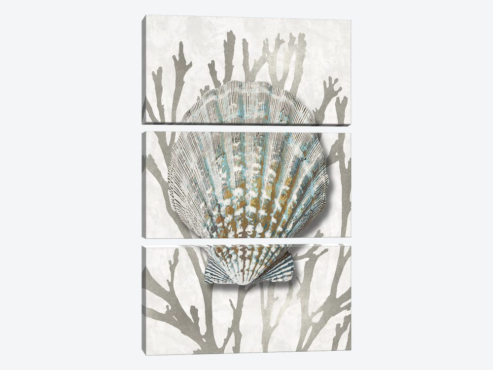 Shell Coral Silver IV by Caroline Kelly 3-piece Canvas Print