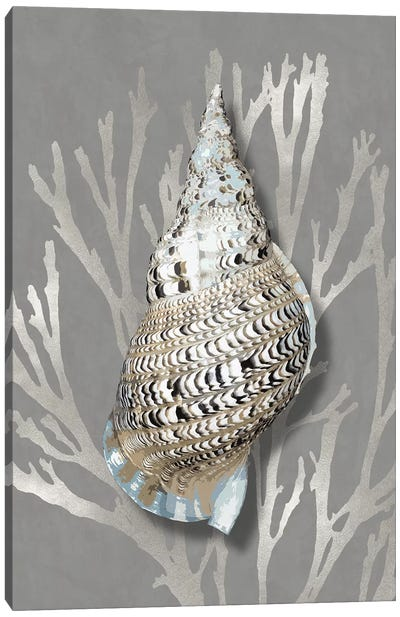 Shell Coral Silver on Gray I Canvas Art Print