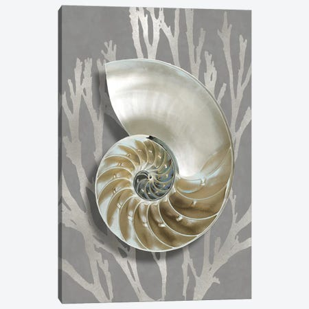 Shell Coral Silver on Gray II Canvas Print #KEL87} by Caroline Kelly Canvas Print