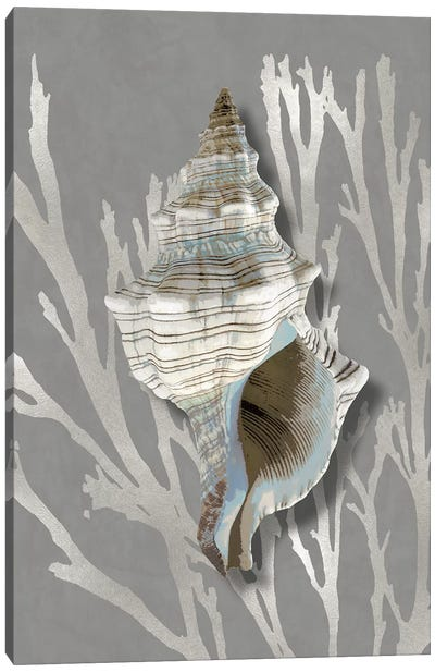 Shell Coral Silver on Gray III Canvas Art Print